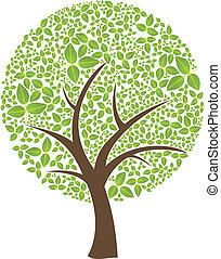 liść, wiosna, abstrakcyjny, drzewo, odizolowany, czas