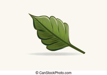 liść, zdrowie, natura, logo, wektor