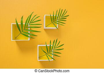 liście, żółty, kabiny, dłoń, tło, biały