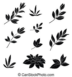 liście, czarnoskóry, sylwetka