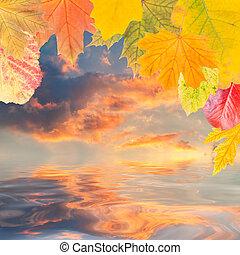 liście, i, majestatyczny, chmury