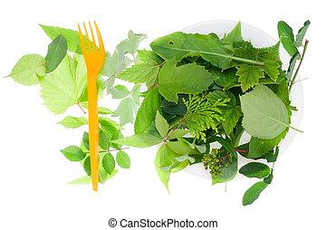 liście, jadło, zdrowy