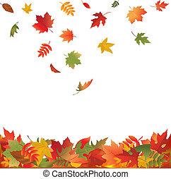 liście, spadanie, upadek