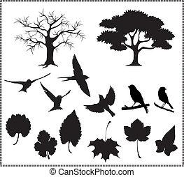 liście, sylwetka, ptaszki, wektor, drzewo