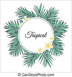 liście, tropikalny, dłoń, plumeria, kwiaty, ułożyć