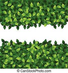 liście, zielone tło