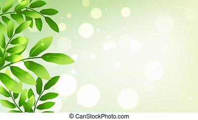 liście, zielone tło, przestrzeń, tekst