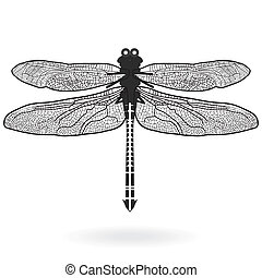 libélula, aislado, alto, calidad