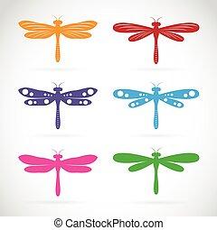 libélula, grupo, coloridos, vetorial, fundo, branca