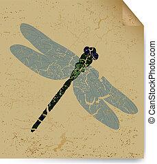 libélula, viejo, sheet., vector, secado, libro