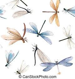 libel, model, vector, kleurrijke, watercolor, seamless, zomer, insect