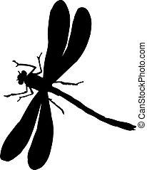 libellule, blanc, silhouette, noir