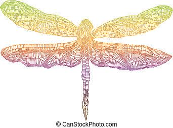 libellule, coloré