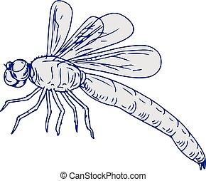 libellule, voler, dessin, côté