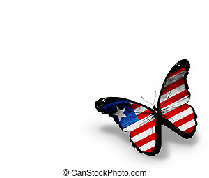 Liberia flag butterfly, isolated on white background