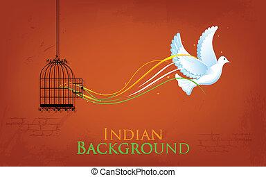 liberté, apprécier, cage, colombe