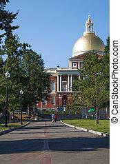 liberté, piste, ligne rouge, croisement, commun, parc, dans, boston