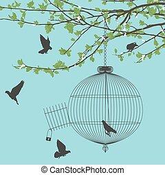 libertad, aves