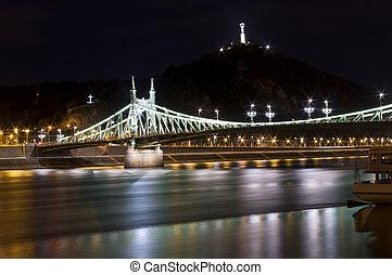 Liberty Bridge in Budapest, Hungary. Night scene