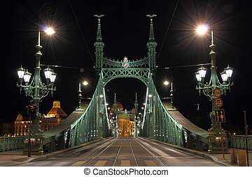 Liberty bridge in Budapest, illuminated at night.