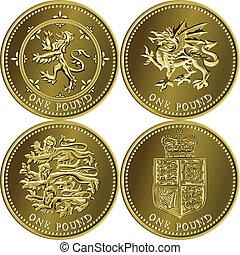 libra, dinheiro, moeda britânica, ouro, um, jogo, vetorial