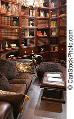 library interior in usual furniture shop