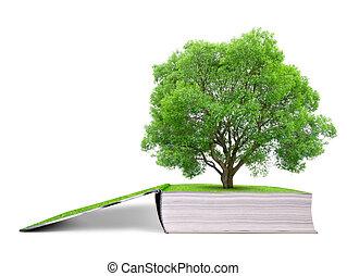 libro, árbol, naturaleza