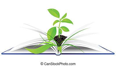 libro aperto, con, giovane, pianta verde