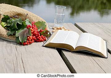 libro, bacche, viburnum, bibbia, rosso