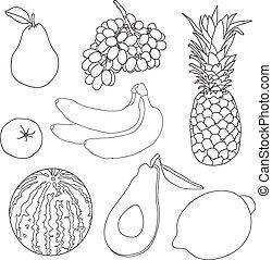 libro colorante, frutte