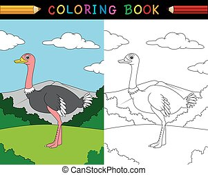 libro colorear, caricatura, avestruz