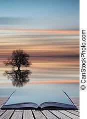 libro, concetto, albero, silhouette, su, vibrante, cielo tramonto, riflesso, calma, mare, paesaggio