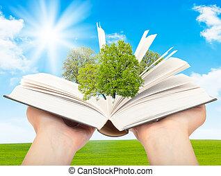 libro, conoscenza