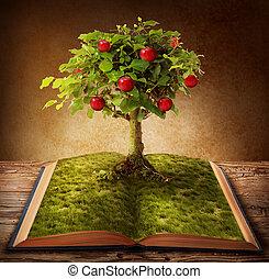 libro, de, conocimiento