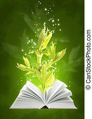 libro, magia, suelo