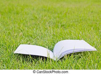 libro, pasto o césped