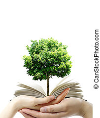 libro, thr, mani