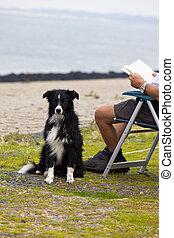 libro, vecchio, lettura, uomo, suo, cane