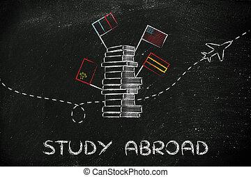 libros, banderas, estudio, abroad:, avión