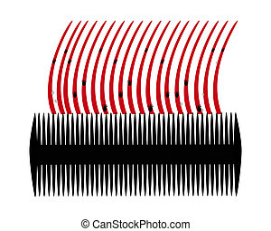 Lice comb and hair with nits on white background