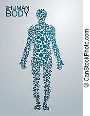 lichaam, concept, menselijk