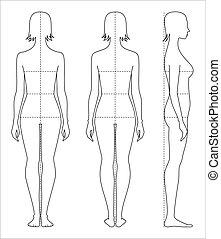 lichaam, maten, vrouwen