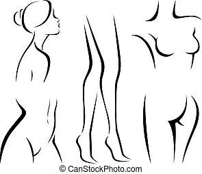 lichaam, set, communie, beauty.eps, vrouwen