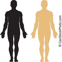 lichaam, silhouette, menselijk