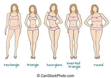lichaam, vrouw, gedaantes, vijf, vrouwlijk, figuren, types