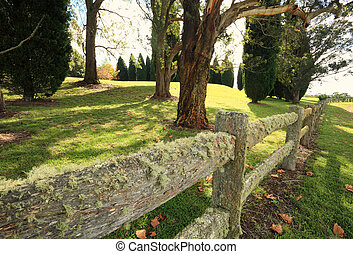 Lichen covered fence - A timber fence is covered in lichens ...
