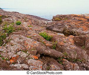 Lichen Festooned Rock Formations
