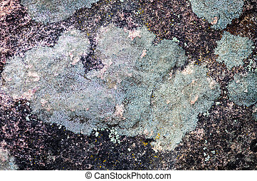 Lichen on the stone surface.