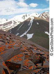 Lichen rocks, Kyrgyzstan