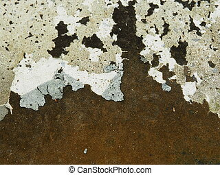 lichen texture.